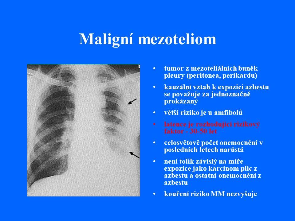Maligní mezoteliom tumor z mezoteliálních buněk pleury (peritonea, perikardu) kauzální vztah k expozici azbestu se považuje za jednoznačně prokázaný větší riziko je u amfibolů latence je rozhodující rizikový faktor - 30-50 let celosvětově počet onemocnění v posledních letech narůstá není tolik závislý na míře expozice jako karcinom plic z azbestu a ostatní onemocnění z azbestu kouření riziko MM nezvyšuje
