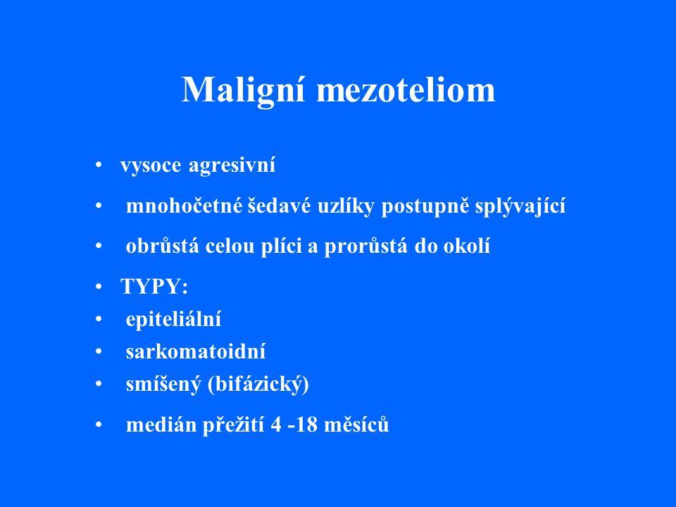 Maligní mezoteliom vysoce agresivní mnohočetné šedavé uzlíky postupně splývající obrůstá celou plíci a prorůstá do okolí TYPY: epiteliální sarkomatoidní smíšený (bifázický) medián přežití 4 -18 měsíců