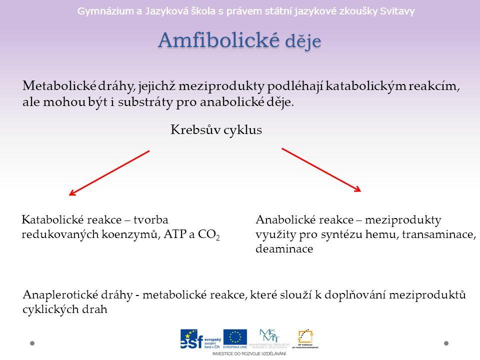 Gymnázium a Jazyková škola s právem státní jazykové zkoušky Svitavy Amfibolické děje Metabolické dráhy, jejichž meziprodukty podléhají katabolickým reakcím, ale mohou být i substráty pro anabolické děje.
