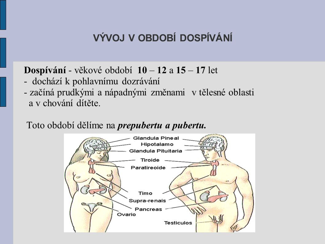 Dospívání - věkové období 10 – 12 a 15 – 17 let - dochází k pohlavnímu dozrávání - začíná prudkými a nápadnými změnami v tělesné oblasti a v chování dítěte.