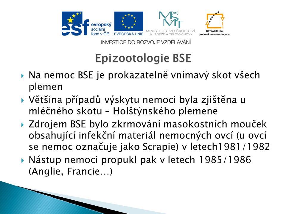  Na nemoc BSE je prokazatelně vnímavý skot všech plemen  Většina případů výskytu nemoci byla zjištěna u mléčného skotu – Holštýnského plemene  Zdrojem BSE bylo zkrmování masokostních mouček obsahující infekční materiál nemocných ovcí (u ovcí se nemoc označuje jako Scrapie) v letech1981/1982  Nástup nemoci propukl pak v letech 1985/1986 (Anglie, Francie…) Epizootologie BSE
