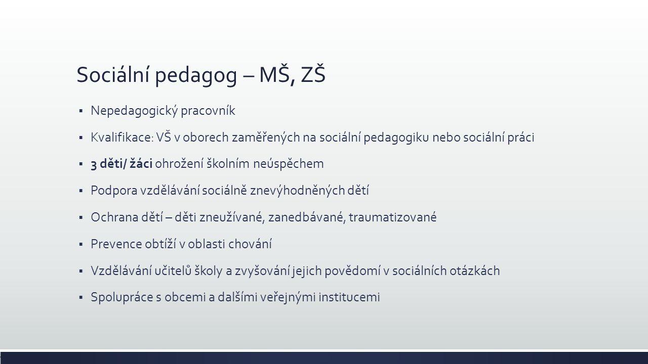 Sociální pedagog – MŠ, ZŠ  Nepedagogický pracovník  Kvalifikace: VŠ v oborech zaměřených na sociální pedagogiku nebo sociální práci  3 děti/ žáci o