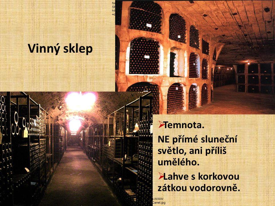 NEZNÁMÝ.AZ víno [online]. [cit. 5.2.2013].