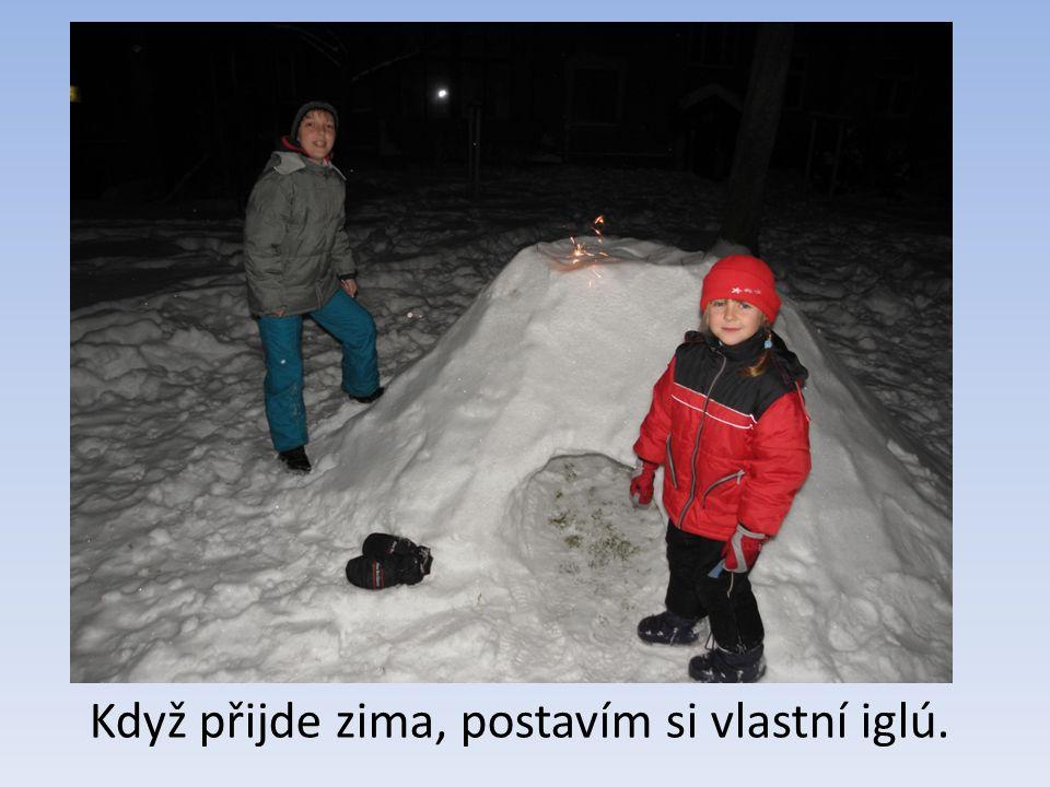 Když přijde zima, postavím si vlastní iglú.