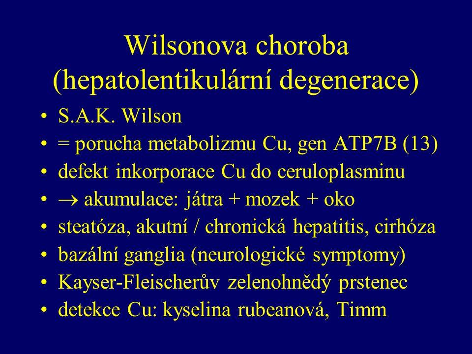 Wilsonova choroba (hepatolentikulární degenerace) S.A.K.
