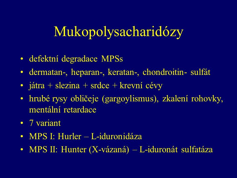 Mukopolysacharidózy defektní degradace MPSs dermatan-, heparan-, keratan-, chondroitin- sulfát játra + slezina + srdce + krevní cévy hrubé rysy obličeje (gargoylismus), zkalení rohovky, mentální retardace 7 variant MPS I: Hurler – L-iduronidáza MPS II: Hunter (X-vázaná) – L-iduronát sulfatáza
