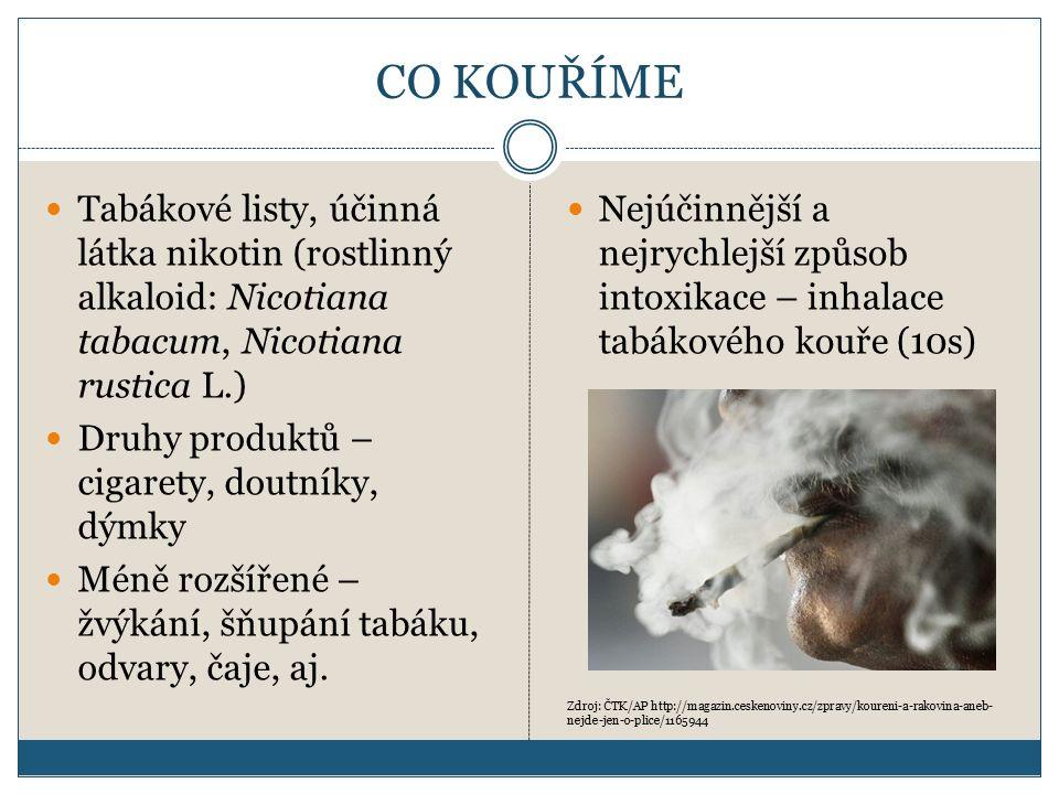 CO KOUŘÍME Tabákové listy, účinná látka nikotin (rostlinný alkaloid: Nicotiana tabacum, Nicotiana rustica L.) Druhy produktů – cigarety, doutníky, dýmky Méně rozšířené – žvýkání, šňupání tabáku, odvary, čaje, aj.