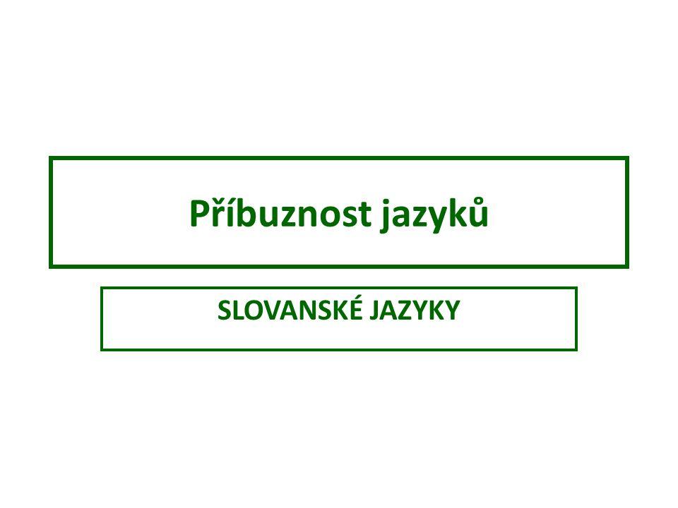 Příbuznost jazyků SLOVANSKÉ JAZYKY