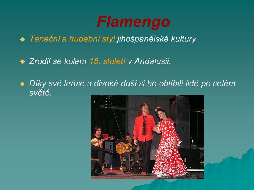 Flamengo   Taneční a hudební styl jihošpanělské kultury.   Zrodil se kolem 15. století v Andalusii.   Díky své kráse a divoké duši si ho oblíbil