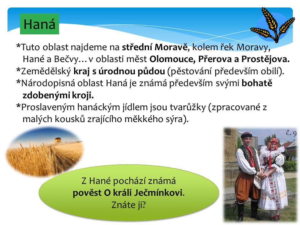 8 Haná *Tuto oblast najdeme na střední Moravě, kolem řek Moravy, Hané a Bečvy…v oblasti měst Olomouce, Přerova a Prostějova. *Zemědělský kraj s úrodno