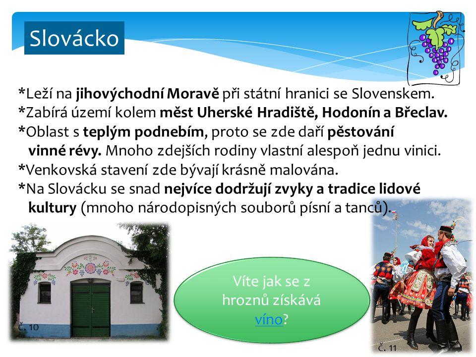 9 Slovácko *Leží na jihovýchodní Moravě při státní hranici se Slovenskem. *Zabírá území kolem měst Uherské Hradiště, Hodonín a Břeclav. *Oblast s tepl