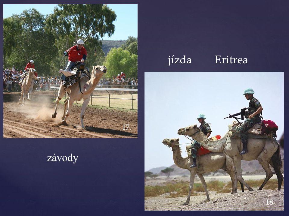 závody jízda Eritrea 17. 18.