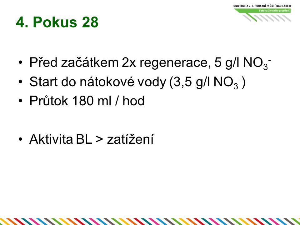 4. Pokus 28 Před začátkem 2x regenerace, 5 g/l NO 3 - Start do nátokové vody (3,5 g/l NO 3 - ) Průtok 180 ml / hod Aktivita BL > zatížení