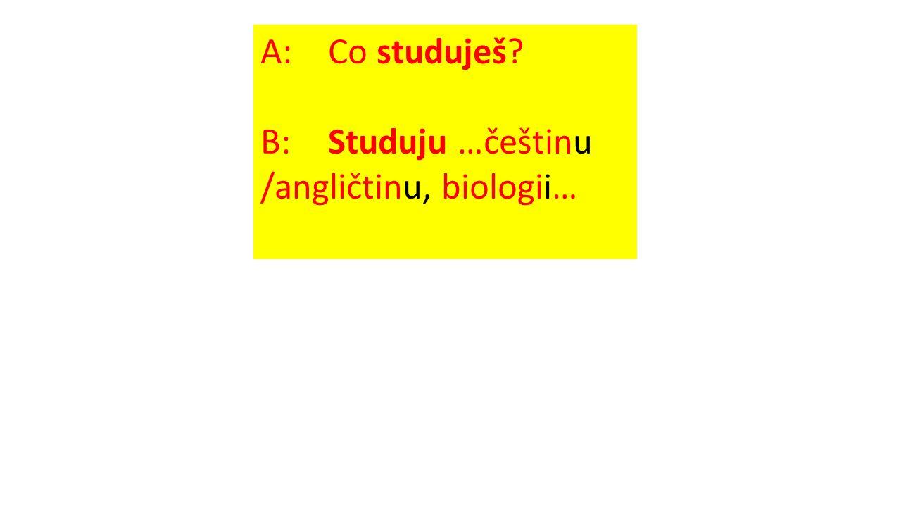 A: Co studuješ B: Studuju …češtinu /angličtinu, biologii…