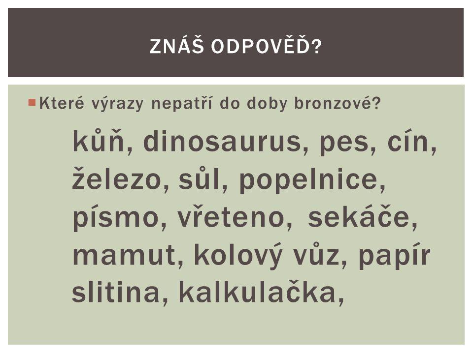  Které výrazy nepatří do doby bronzové? kůň, dinosaurus, pes, cín, železo, sůl, popelnice, písmo, vřeteno, sekáče, mamut, kolový vůz, papír slitina,