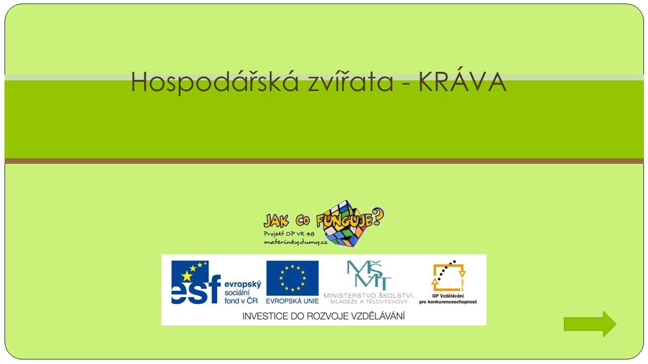 Mléko Projekt CZ.1.07/1.3.00/48.0075 je spolufinancován Evropským sociálním fondem a státním rozpo č tem Č eské republiky.