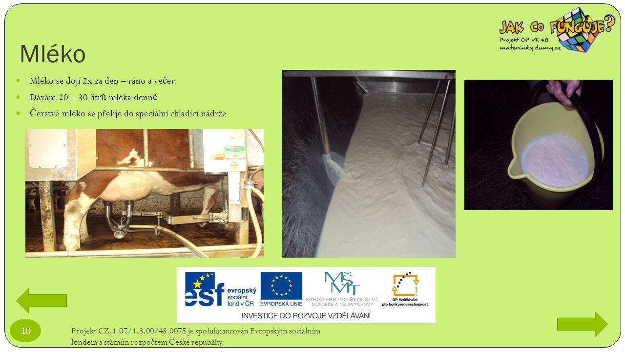 Mléko Projekt CZ.1.07/1.3.00/48.0075 je spolufinancován Evropským sociálním fondem a státním rozpo č tem Č eské republiky. 10 Mléko se dojí 2x za den
