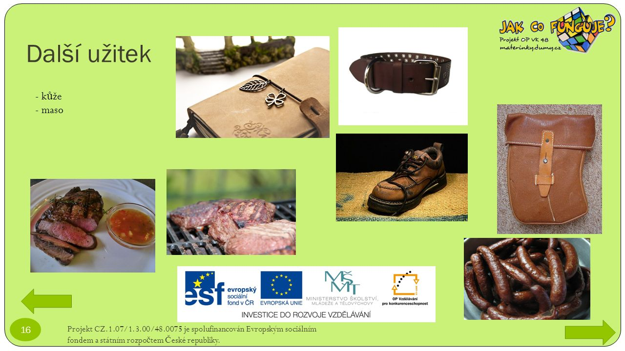 Další užitek Projekt CZ.1.07/1.3.00/48.0075 je spolufinancován Evropským sociálním fondem a státním rozpo č tem Č eské republiky. 16 - k ů že - maso