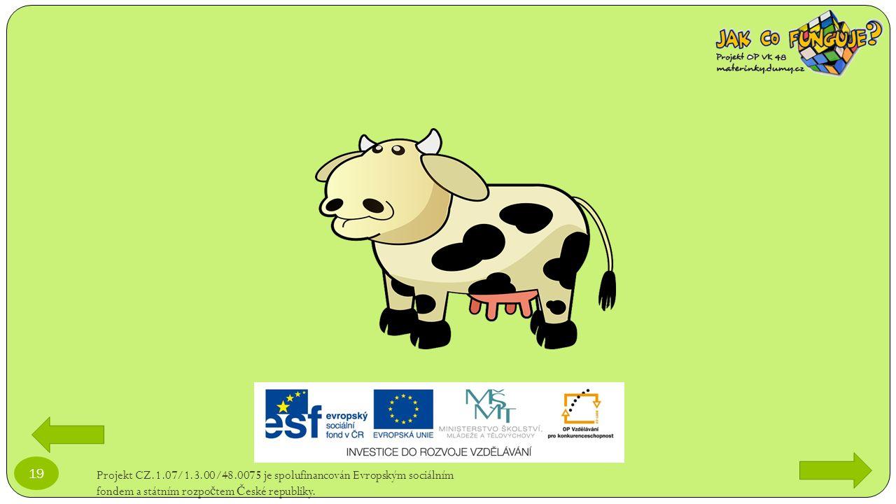 Projekt CZ.1.07/1.3.00/48.0075 je spolufinancován Evropským sociálním fondem a státním rozpo č tem Č eské republiky. 19
