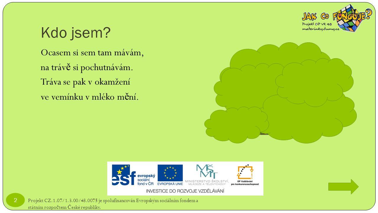 Kdo jsem? Projekt CZ.1.07/1.3.00/48.0075 je spolufinancován Evropským sociálním fondem a státním rozpo č tem Č eské republiky. 2 Ocasem si sem tam máv