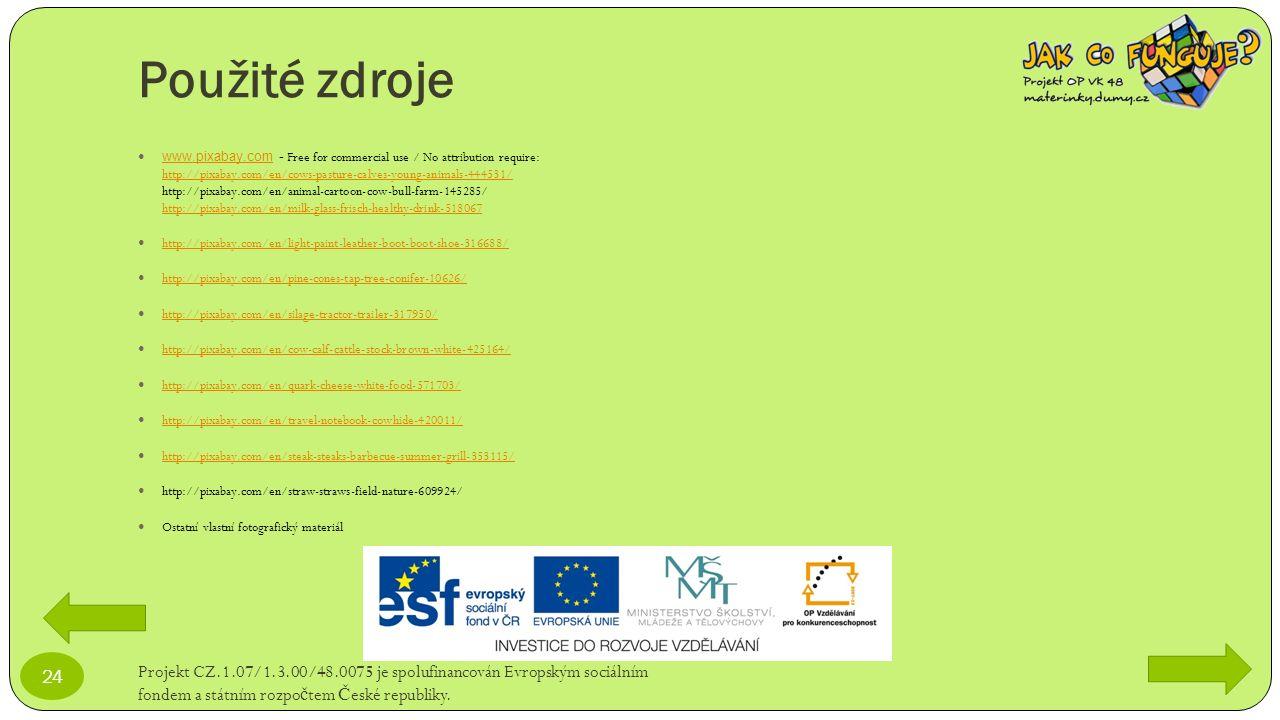 Použité zdroje Projekt CZ.1.07/1.3.00/48.0075 je spolufinancován Evropským sociálním fondem a státním rozpo č tem Č eské republiky. 24 www.pixabay.com