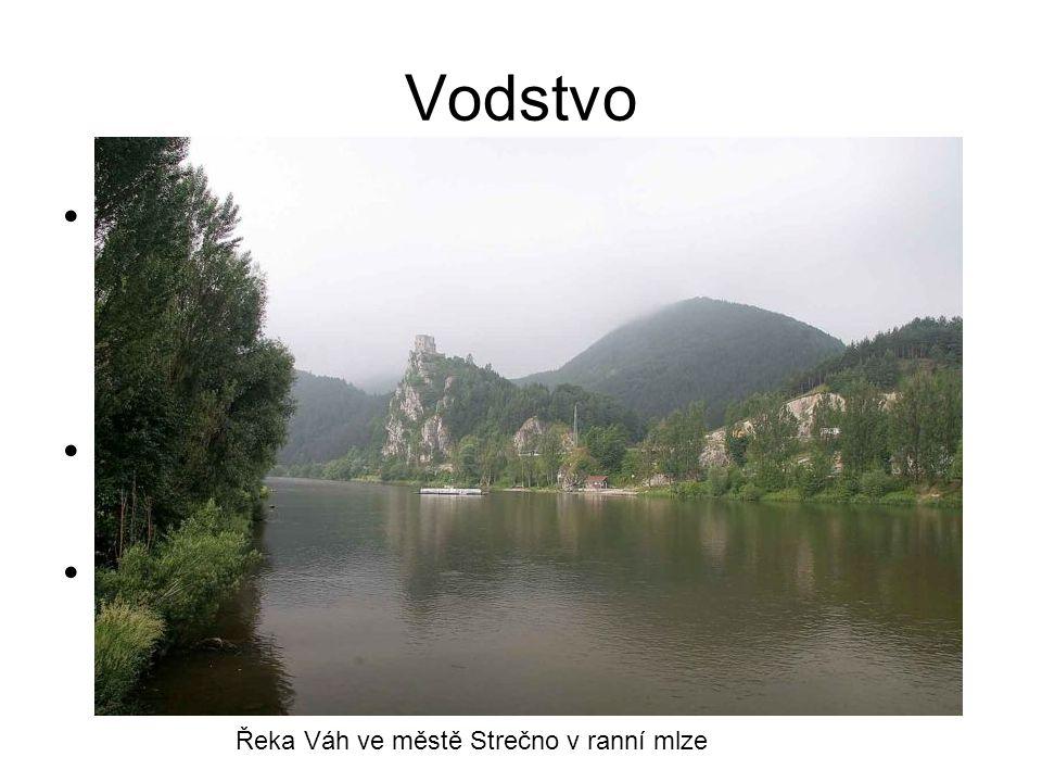 Jednu z nejvýznamnějších řek protékajících Slovenskem představuje Dunaj, který spolu s Moravou tvoří slovenskou jihozápadní hranici. Dunaj Nejdelším s