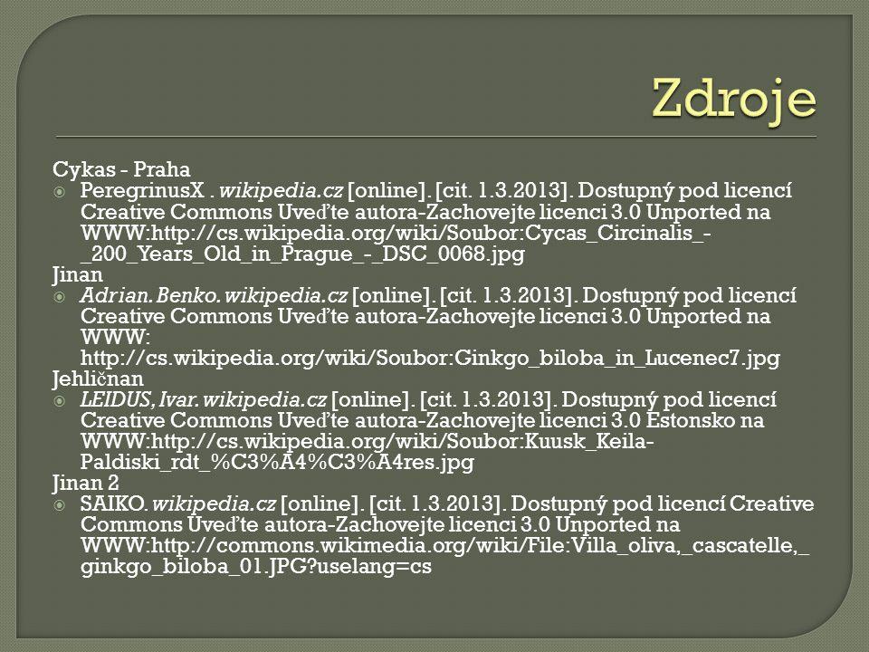 Cykas - Praha  PeregrinusX. wikipedia.cz [online].