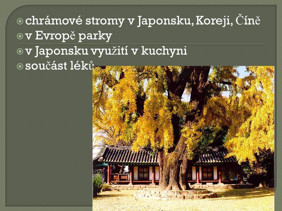  chrámové stromy v Japonsku, Koreji, Č ín ě  v Evrop ě parky  v Japonsku vyu ž ití v kuchyni  sou č ást lék ů