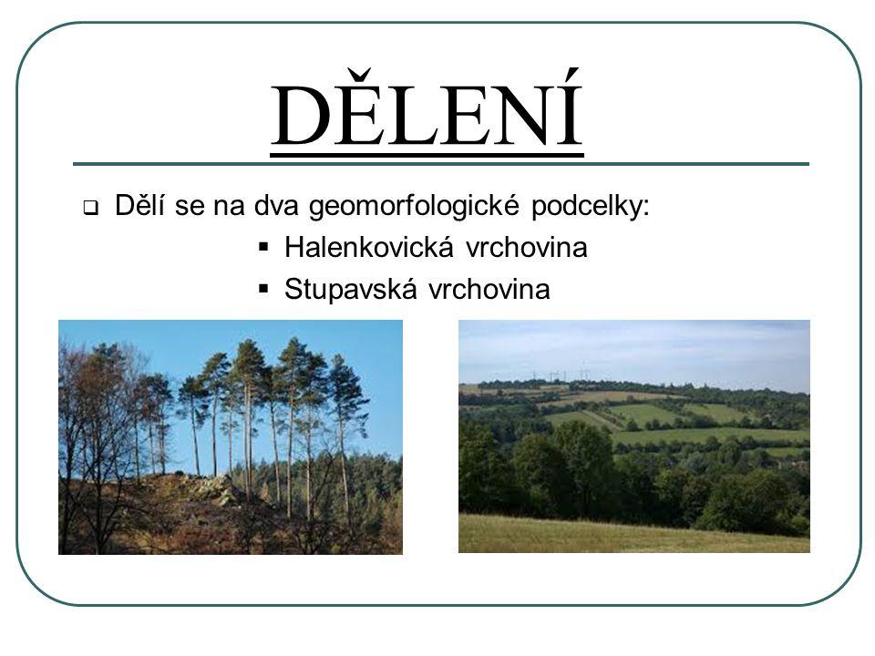 DĚLENÍ  Dělí se na dva geomorfologické podcelky:  Halenkovická vrchovina  Stupavská vrchovina