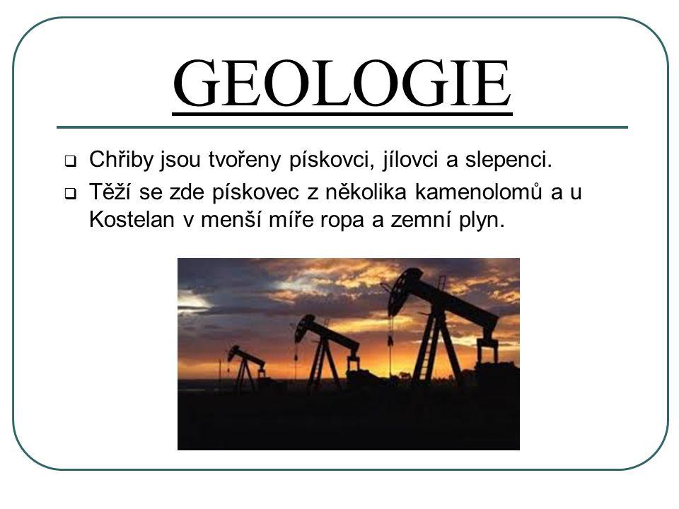 GEOLOGIE  Chřiby jsou tvořeny pískovci, jílovci a slepenci.