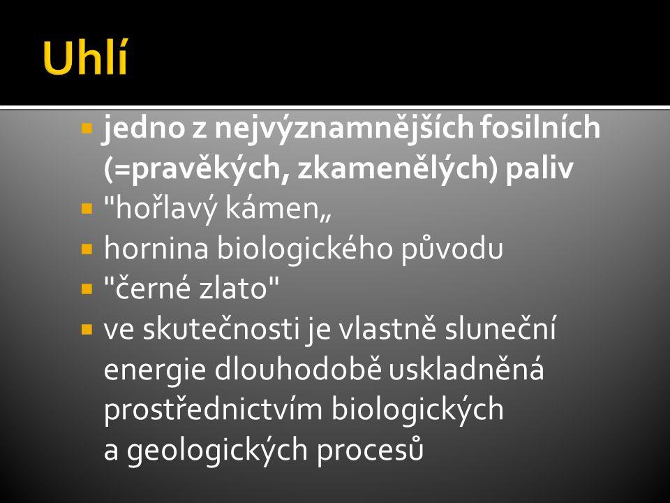 """ jedno z nejvýznamnějších fosilních (=pravěkých, zkamenělých) paliv  hořlavý kámen""""  hornina biologického původu  černé zlato  ve skutečnosti je vlastně sluneční energie dlouhodobě uskladněná prostřednictvím biologických a geologických procesů"""