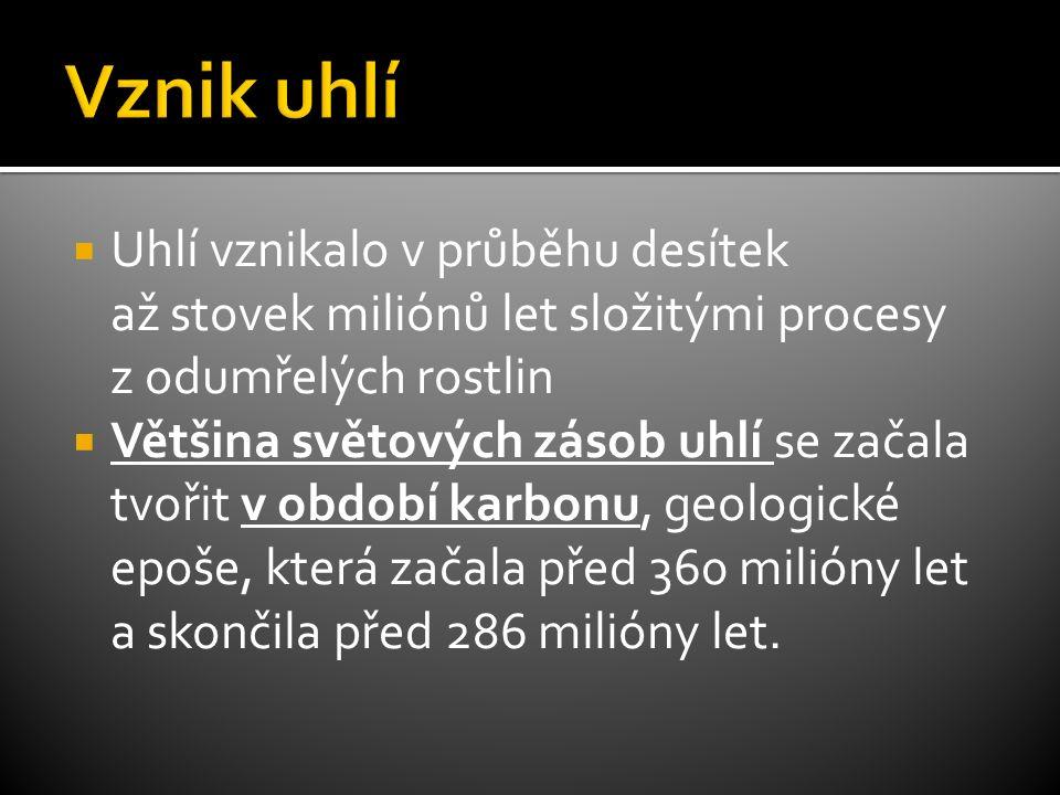  Důlní plyny mají poněkud jiné složení než zemní plyn doprovázející ropu, proto se pro ně používá také výraz karbonský zemní plyn .
