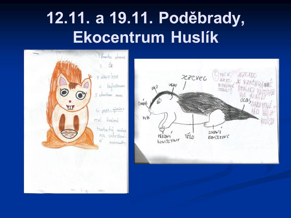 12.11. a 19.11. Poděbrady, Ekocentrum Huslík