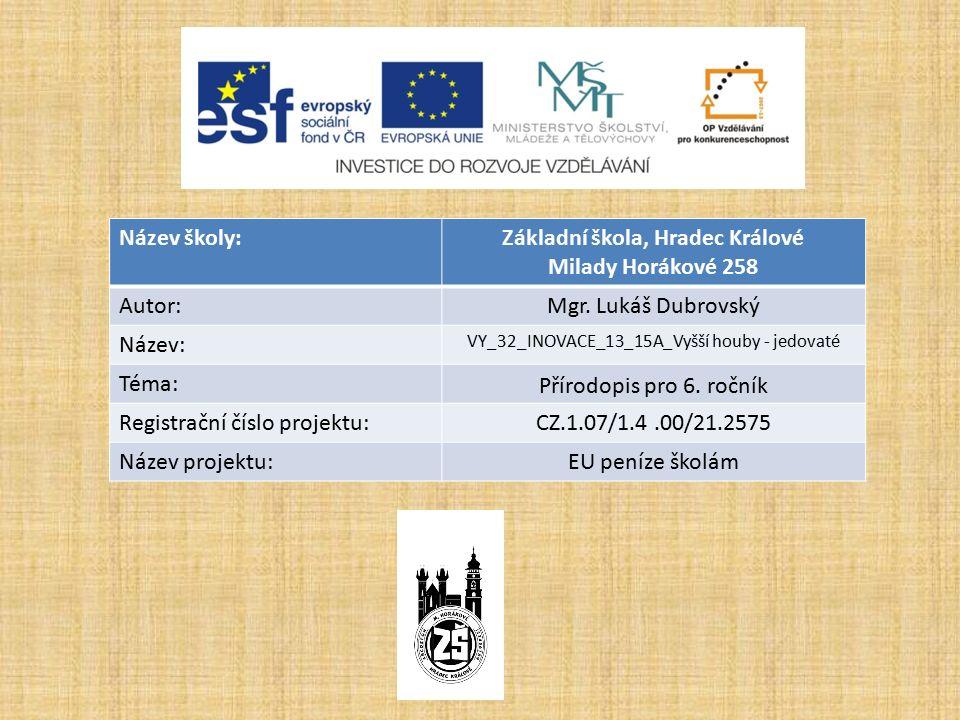 Název školy:Základní škola, Hradec Králové Milady Horákové 258 Autor:Mgr.