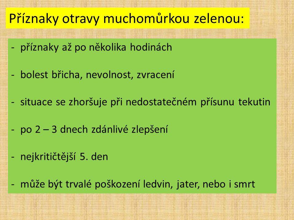 Příznaky otravy muchomůrkou zelenou: -příznaky až po několika hodinách -bolest břicha, nevolnost, zvracení -situace se zhoršuje při nedostatečném přísunu tekutin -po 2 – 3 dnech zdánlivé zlepšení -nejkritičtější 5.