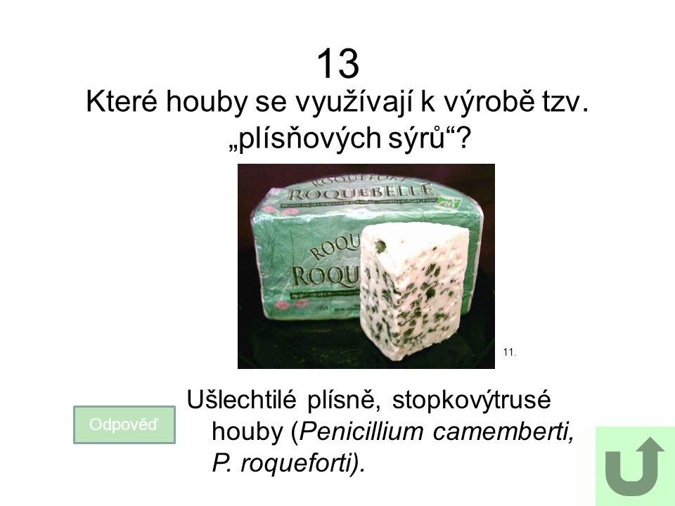 """13 Které houby se využívají k výrobě tzv. """"plísňových sýrů""""? Odpověď 11. Ušlechtilé plísně, stopkovýtrusé houby (Penicillium camemberti, P. roqueforti"""