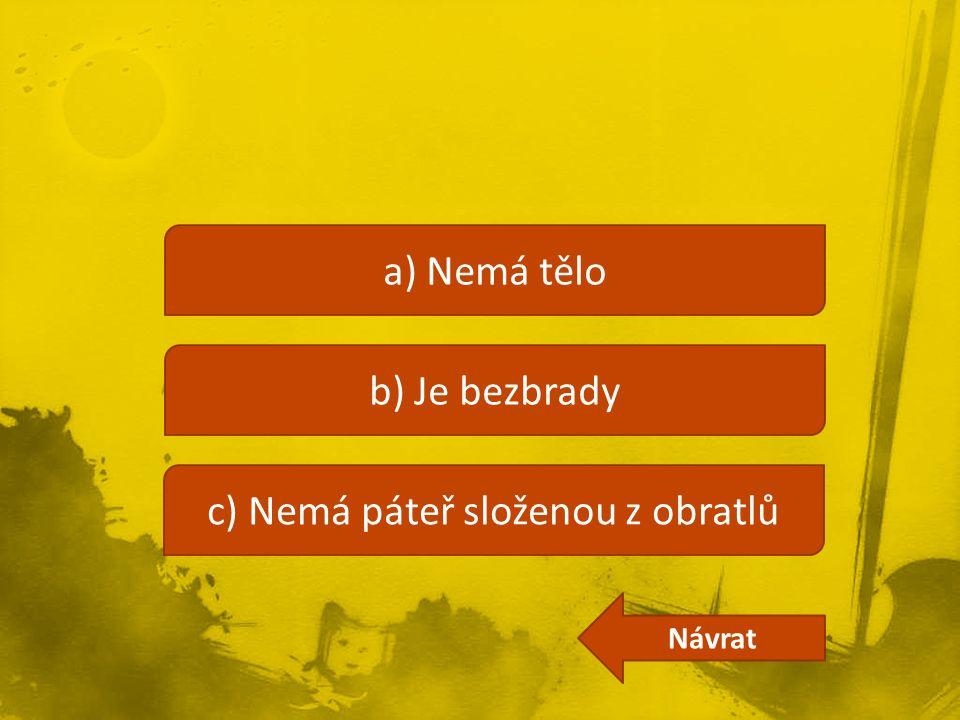 a) Nemá tělo b) Je bezbrady c) Nemá páteř složenou z obratlů Návrat