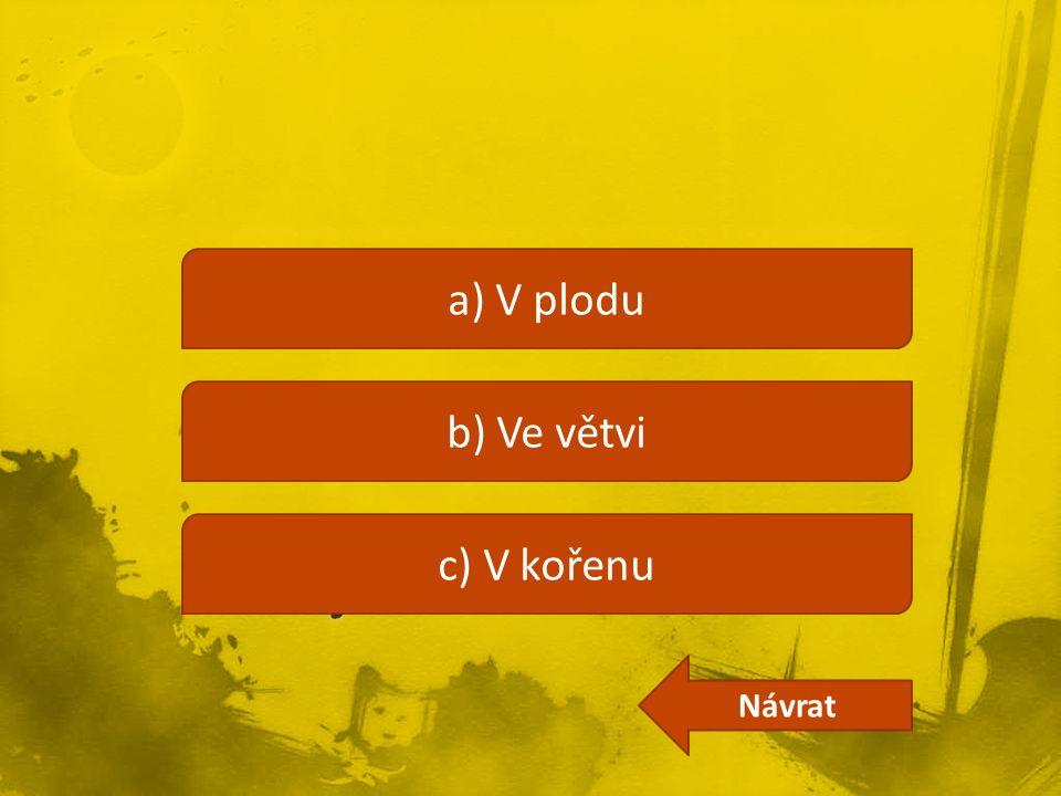 a) V plodu b) Ve větvi c) V kořenu Návrat