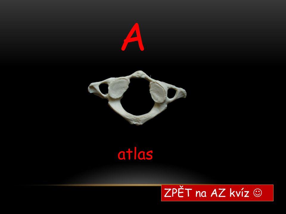 A atlas ZPĚT na AZ kvíz