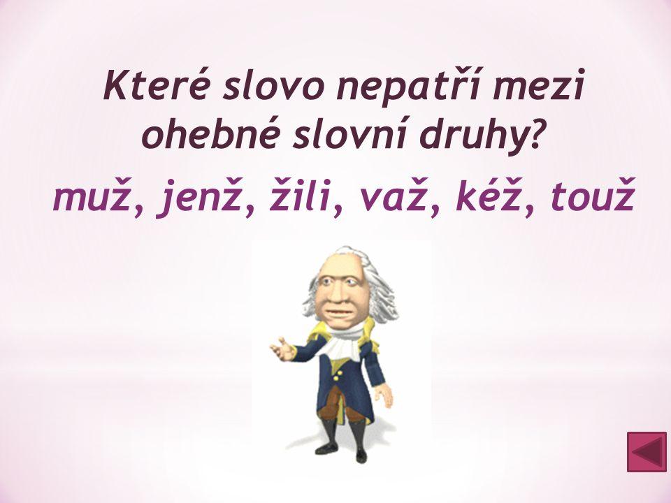 Které slovo nepatří mezi ohebné slovní druhy? muž, jenž, žili, važ, kéž, touž kéž = částice