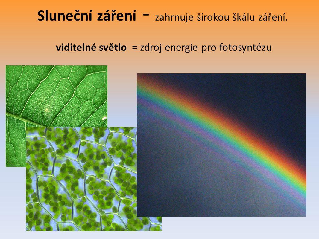 Sluneční záření - zahrnuje širokou škálu záření. viditelné světlo = zdroj energie pro fotosyntézu