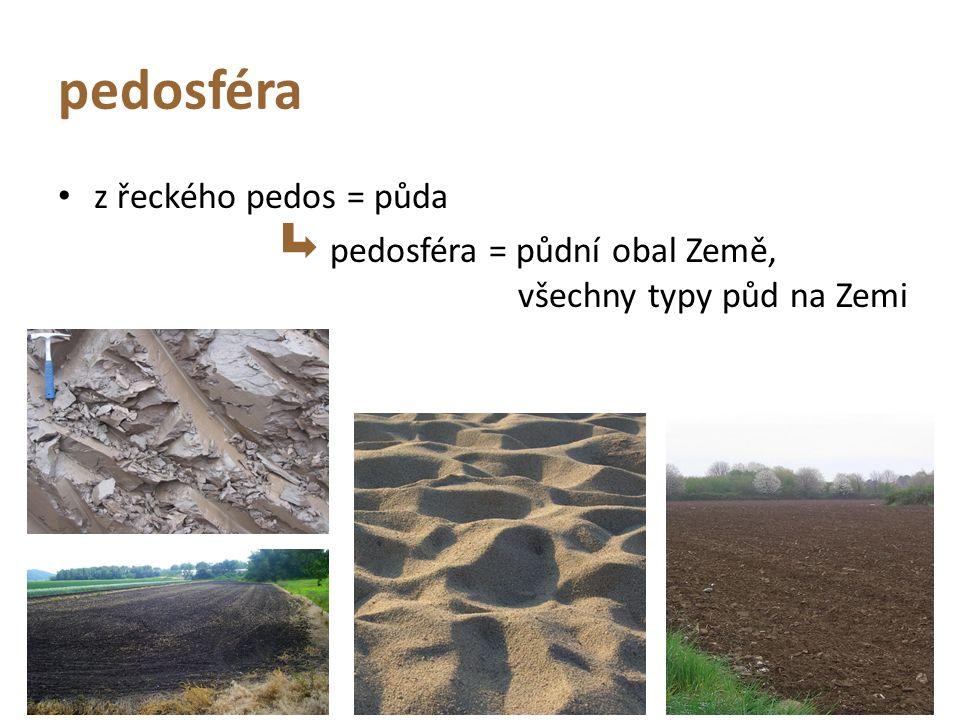 pedosféra z řeckého pedos = půda pedosféra = půdní obal Země, všechny typy půd na Zemi