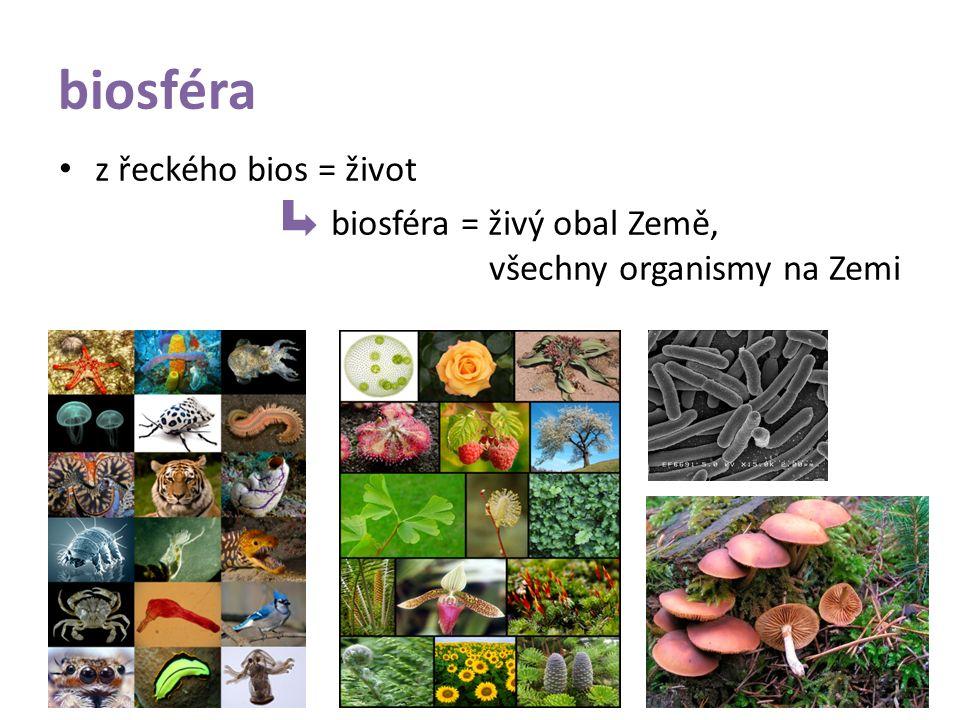biosféra z řeckého bios = život biosféra = živý obal Země, všechny organismy na Zemi