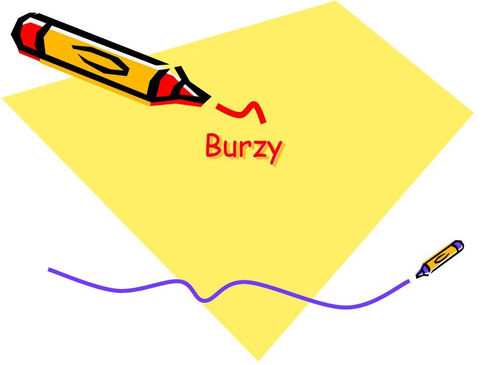 BurzyBurzy