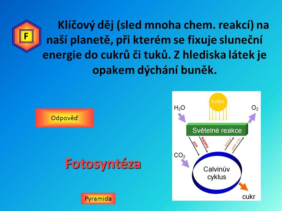Klíčový děj (sled mnoha chem.