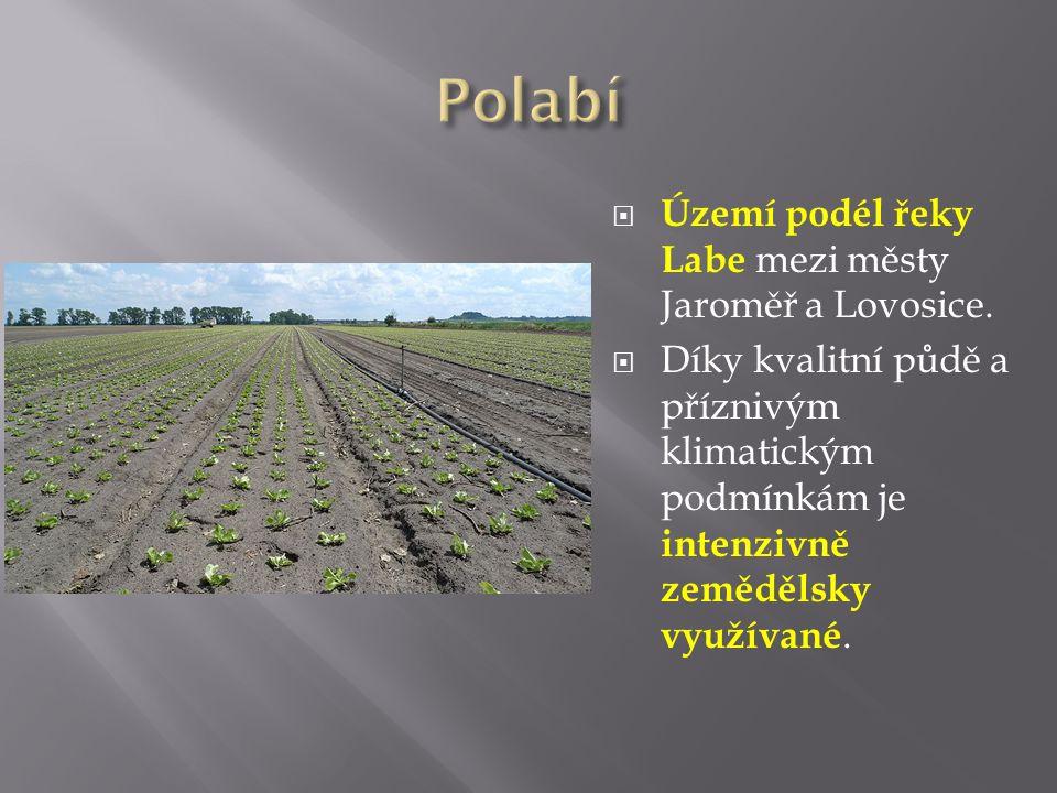 Znak kraje  Pardubický kraj: Wikipedie.In: Wikipedia: the free encyclopedia [online].