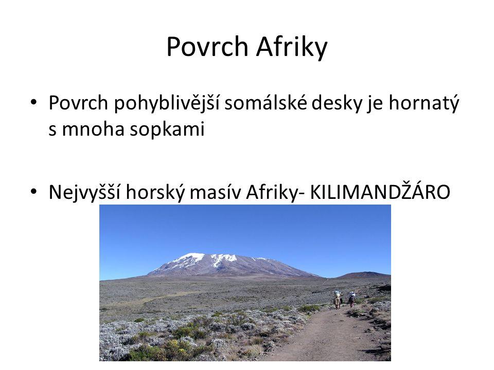 Povrch Afriky Povrch pohyblivější somálské desky je hornatý s mnoha sopkami Nejvyšší horský masív Afriky- KILIMANDŽÁRO
