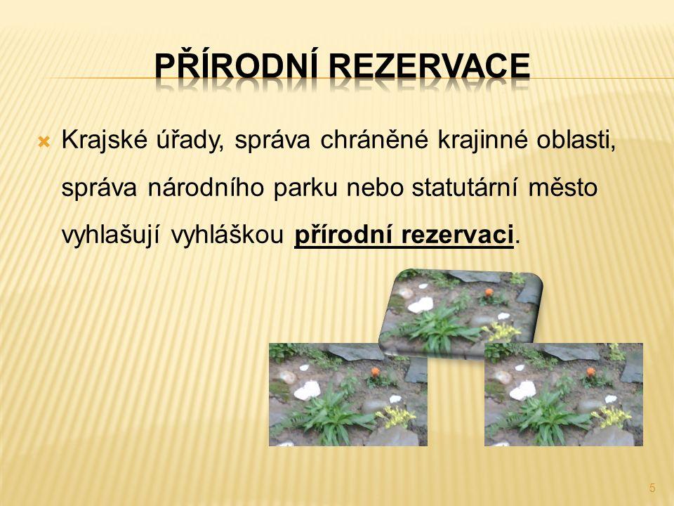  Krajské úřady, správa chráněné krajinné oblasti, správa národního parku nebo statutární město vyhlašují vyhláškou přírodní rezervaci. 5