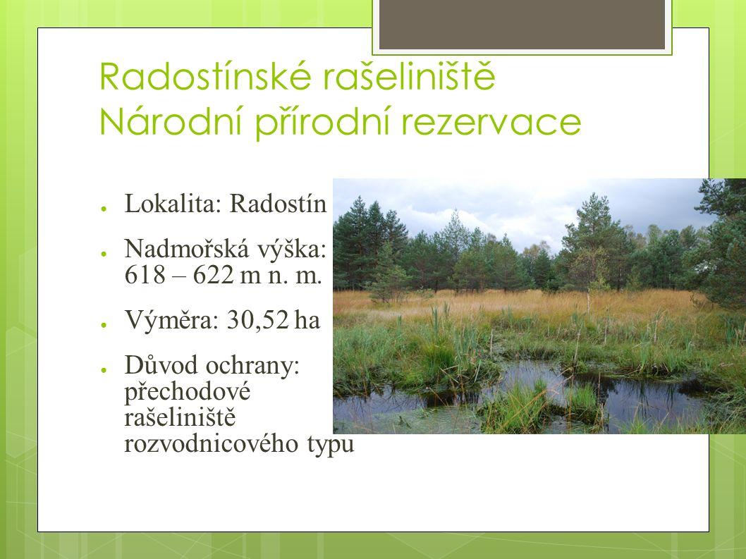 Radostínské rašeliniště Národní přírodní rezervace ● Lokalita: Radostín ● Nadmořská výška: 618 – 622 m n.