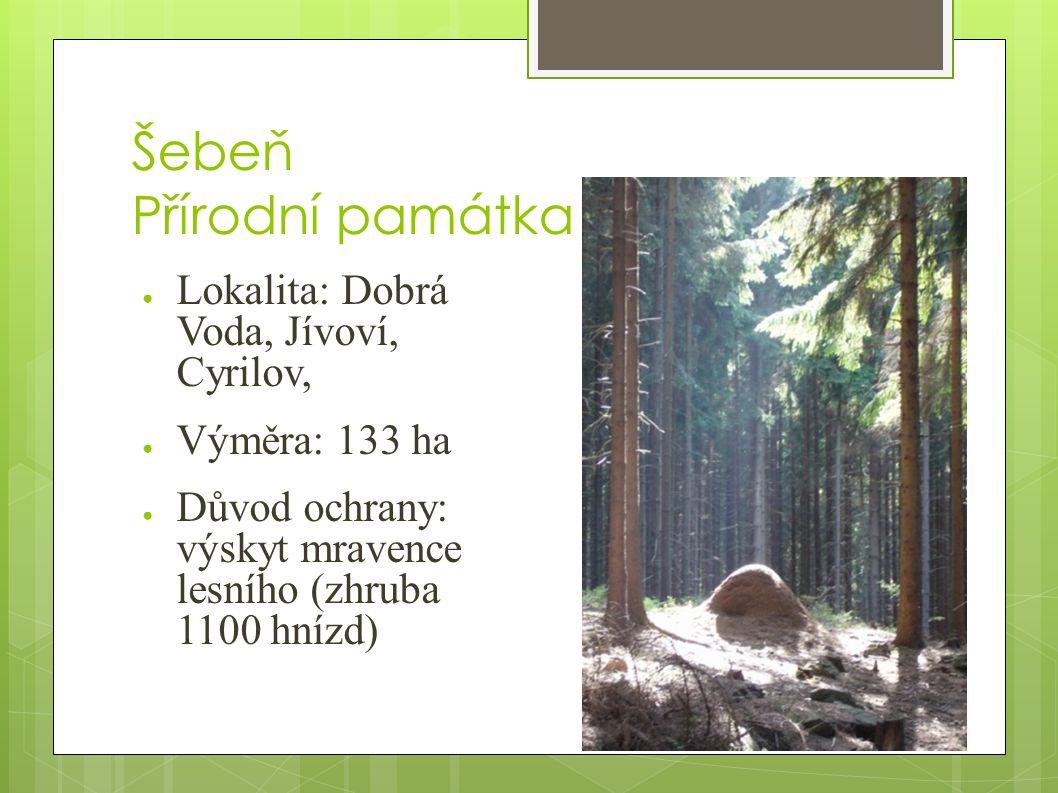 Šebeň Přírodní památka ● Lokalita: Dobrá Voda, Jívoví, Cyrilov, ● Výměra: 133 ha ● Důvod ochrany: výskyt mravence lesního (zhruba 1100 hnízd)